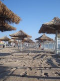 Beach in the morning at the end of the season in Vama Veche resort in Romania Royalty Free Stock Photos
