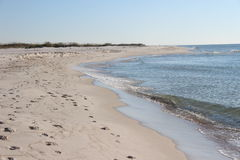 Beach morning. Florida Gulf Coast shoreline in the morning Stock Images