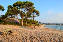 Beach in morning Stock Image