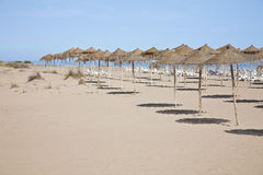 Beach of morocco Royalty Free Stock Photography