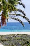 Beach of Morro Jable, Spain Stock Photos