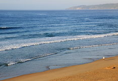 Beach. In Mossel Bay, South Africa Royalty Free Stock Photo