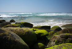 Beach and Mossy Rocks Royalty Free Stock Photos