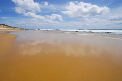 Beach in mozambique Stock Photography