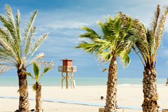 Beach in Narbonne Plage Stock Images