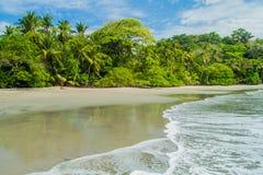 Beach in National Park Manuel Antonio, Costa Ri royalty free stock photography