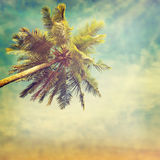 Beach-34. Nature background in vintage style Royalty Free Stock Photos