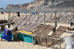 Beach at Nazare fishing village in Portugal Stock Photography