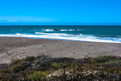 The beach near Cambria, California Royalty Free Stock Photo