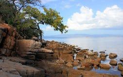 Beach near Cumana, Venezuela. Lovely beach with stones and trees in near sucre venezuela Stock Image