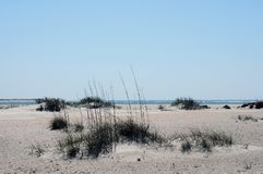 Beach Near Morehead, North Carolina. Wide and long sandy isolated beach near Moorehead, North Carolina, with sparse vegetation looks lonely Royalty Free Stock Photo