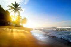 Beach near the ocean Royalty Free Stock Image
