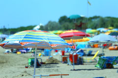 Beach near the sea. Sun umbrellas and sun beds for relaxation Royalty Free Stock Photos