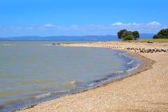 Beach near Thames, New Zealand. Beach near Thames, North Island, New Zealand stock image