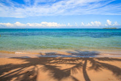 Beach at New Caledonia Stock Image