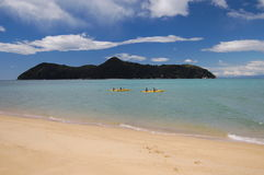 Beach, New Zealand Stock Images