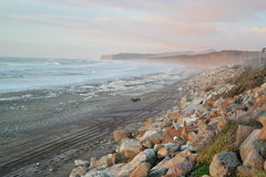 Beach in new zealand Stock Images