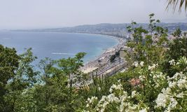Beach in Nice Stock Photo