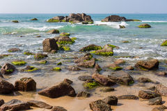 Beach at noon. The beach at noon,a lot of rocks with marine algaes Stock Photography