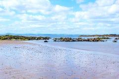 The beach in North Berwick, Scotland Royalty Free Stock Photo
