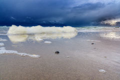 Beach in Northern Holland. North Holland: windy day at the beach with foam royalty free stock photos