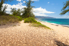 Beach at northshore oahu honululu hawaii Royalty Free Stock Photography