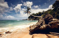 Beach and ocean, Dominican Republic Stock Photos