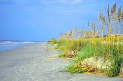 Footprints on Hilton Head Island Beach. Beach ocean dune and grass landscape on Hilton Head Island, South Carolina stock photos