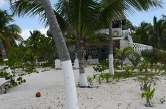 Beach and ocean panoramic  Mexico Stock Photo