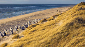 Beach and Ocean - Sylt, Germany Royalty Free Stock Photography