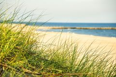 Free Beach Of The Baltic Sea With Beach Grass Royalty Free Stock Images - 110062679