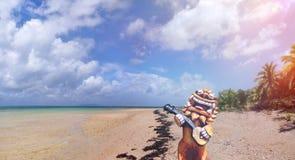 Beach of Okinawa archipelago in Japan. Royalty Free Stock Image