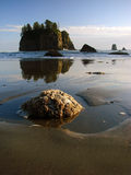 Beach, Olympic National Park. A view from Second Beach in the La Push area in Olympic National Park located on the Olympic Peninsula in Washington state, USA Royalty Free Stock Image