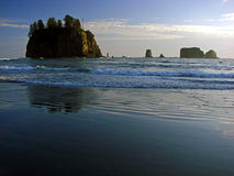 Beach, Olympic National Park Stock Photo