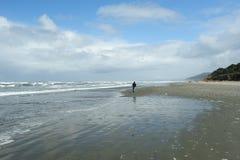Beach of pacific coast Royalty Free Stock Photo