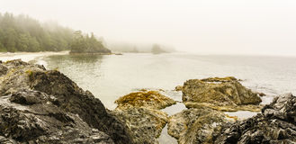 Beach on Pacific Ocean Coast morning and fog Vancouver Island Canada. Stock Photography