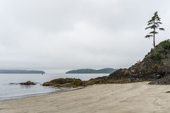 Beach on Pacific Ocean Coast morning and fog Vancouver Island Canada. Stock Photo