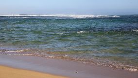Beach on Pacific stock video