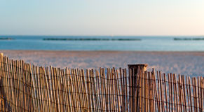 Beach palisade Stock Images