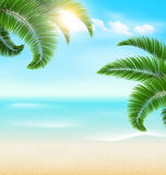 Beach with palm branches and clouds. Summer vacation background Royalty Free Stock Photography