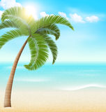 Beach with palm and clouds. Summer vacation background Stock Photos