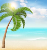 Beach with palm and clouds. Summer vacation background Royalty Free Stock Images