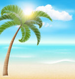 Beach with Palm and Clouds. Summer Vacation Holiday Royalty Free Stock Image