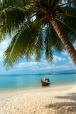 Beach, palm tree, boat Royalty Free Stock Image