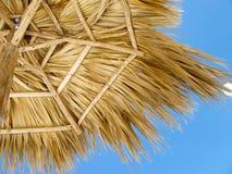 Beach Palm Tree Umbrella Stock Photography