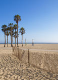 Beach with Palm Trees Royalty Free Stock Photos