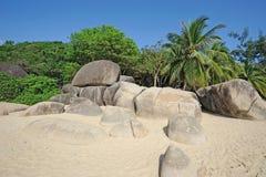 Beach  with palm trees. In Sanya,Hainan,China Royalty Free Stock Photo