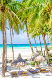 Beach with palm trees and beach beds, summer vacations. Tropical beach with palm trees and beach beds, summer vacations Stock Photo