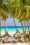 Beach with palm trees and beach beds, summer vacations. Tropical beach with palm trees and beach beds, summer vacations Royalty Free Stock Photography