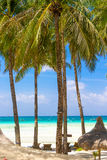 Beach with palm trees and beach beds, summer vacations. Tropical beach with palm trees and beach beds, summer vacations Royalty Free Stock Images
